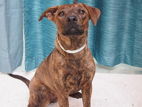 Click for more information about Cassie
